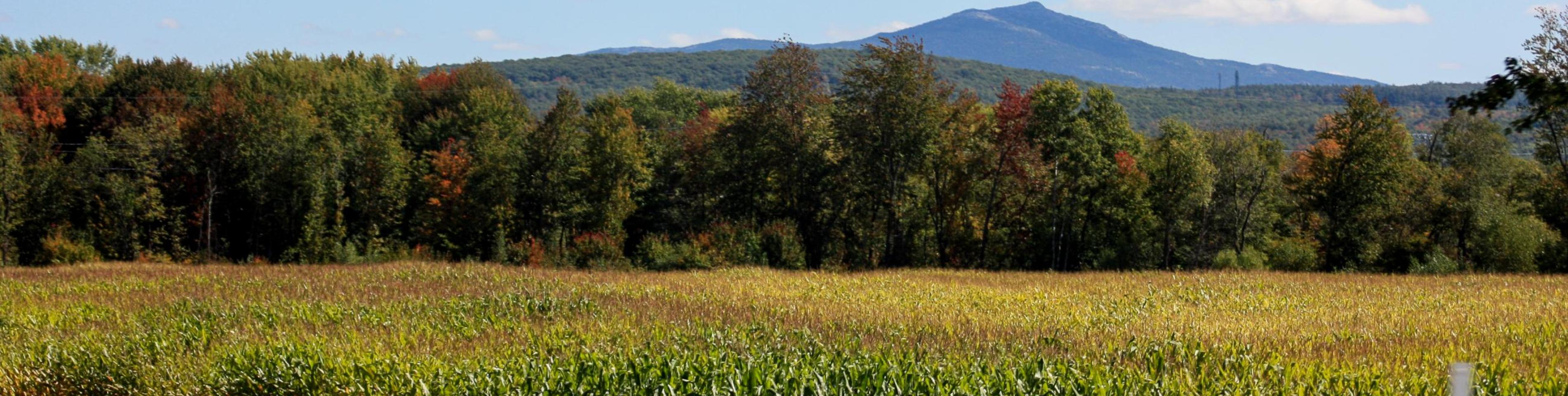 Mount Monadnock View From Keene Corn Field