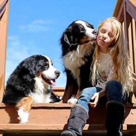 Dogs in Keene