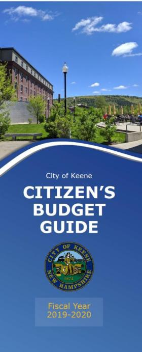 Citizen's Budget Guide Cover
